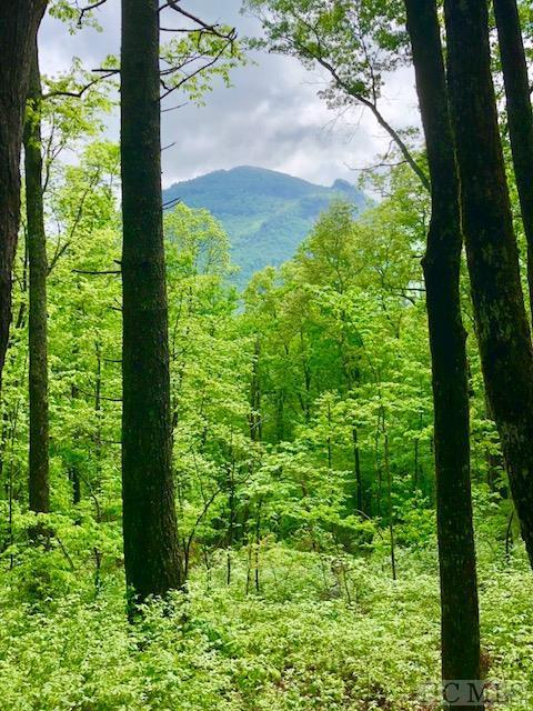 TBD Forestland Rd., Cashiers, NC 28717 (MLS #88434) :: Lake Toxaway Realty Co
