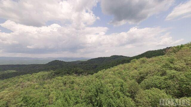 46 Indian Camp Mountain Road, Rosman, NC 28772 (MLS #88438) :: Berkshire Hathaway HomeServices Meadows Mountain Realty