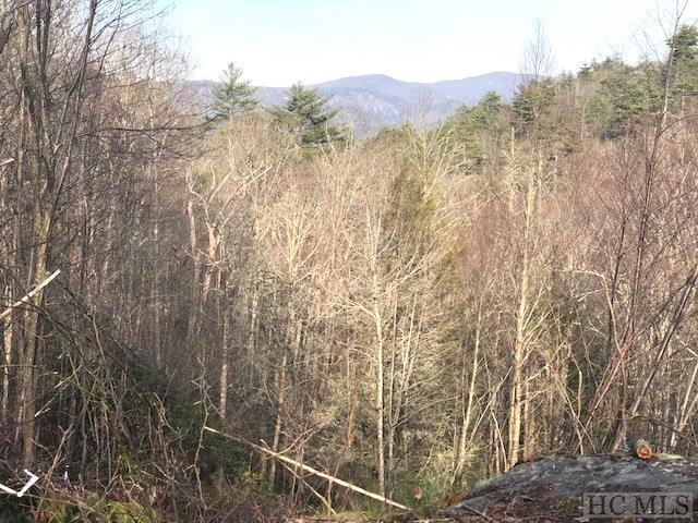 TBD Mountain Meadow Lane, Cashiers, NC 28717 (MLS #88449) :: Lake Toxaway Realty Co