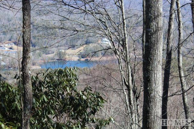 21 Bright Mountain Road, Glenville, NC 28736 (MLS #88492) :: Lake Toxaway Realty Co
