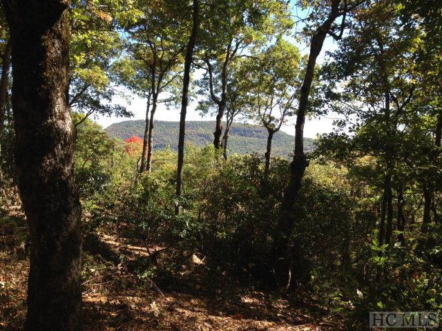 00 Windy Top Road, Highlands, NC 28741 (MLS #88501) :: Lake Toxaway Realty Co