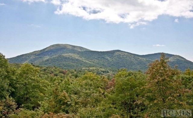 0 Ford Mountain Rd, Dillard, GA 30537 (MLS #88546) :: Lake Toxaway Realty Co