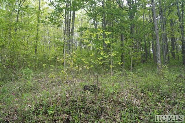 LOT 62 Valley View, Glenville, NC 28736 (MLS #88567) :: Berkshire Hathaway HomeServices Meadows Mountain Realty