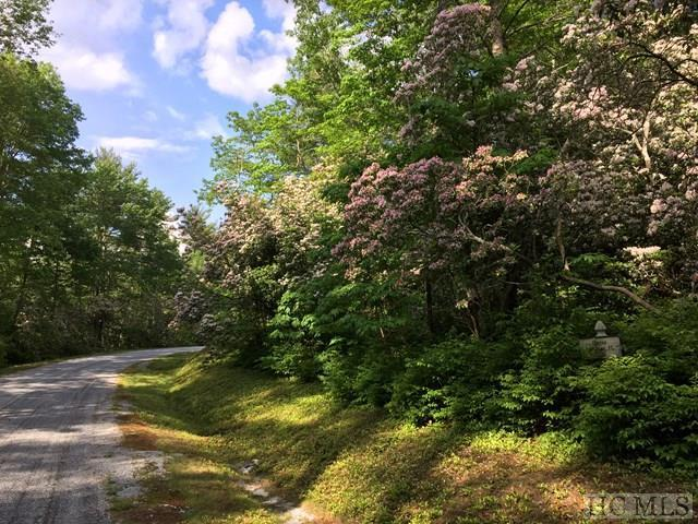26 Bailey Lane, Sapphire, NC 28774 (MLS #88632) :: Berkshire Hathaway HomeServices Meadows Mountain Realty