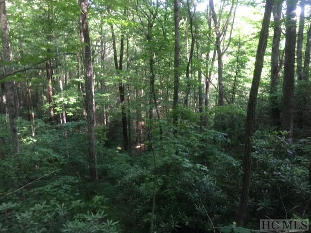 Lot 53 Rocky Top Drive, Cashiers, NC 28717 (MLS #88636) :: Berkshire Hathaway HomeServices Meadows Mountain Realty