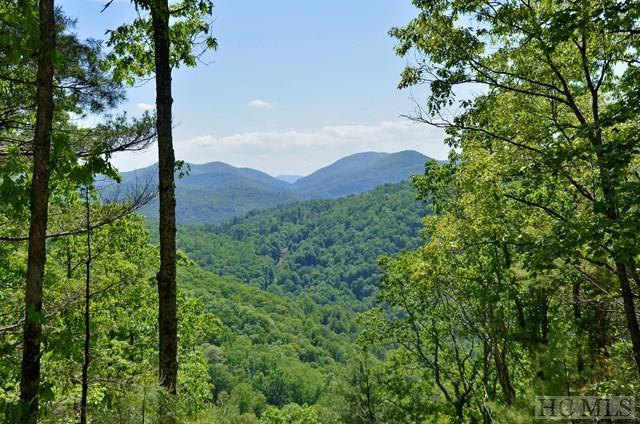 Lot 53 Beechfern Drive, Glenville, NC 28736 (MLS #88758) :: Berkshire Hathaway HomeServices Meadows Mountain Realty