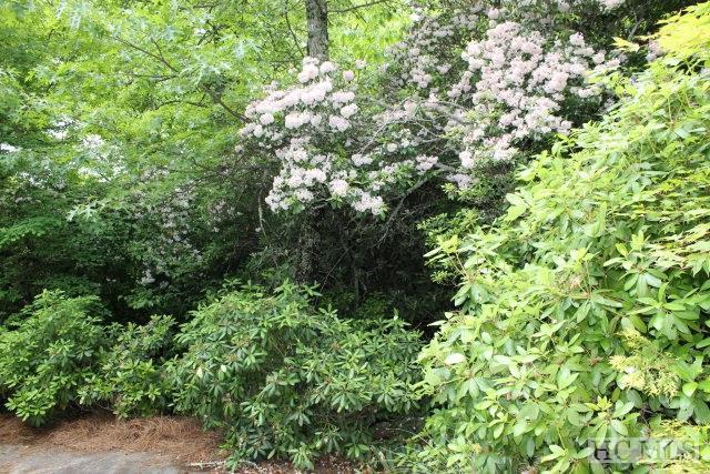 Lot 31 Scenic Drive, Dillard, GA 30537 (MLS #88791) :: Berkshire Hathaway HomeServices Meadows Mountain Realty