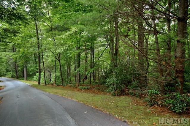 Lot E9 Boulder Dash Road, Cashiers, NC 28717 (MLS #88888) :: Lake Toxaway Realty Co