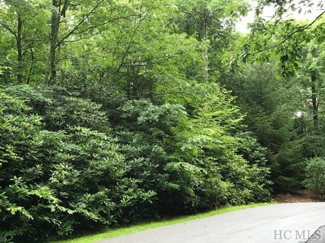 Lot 9 Toxaway Place, Lake Toxaway, NC 28747 (MLS #88929) :: Berkshire Hathaway HomeServices Meadows Mountain Realty