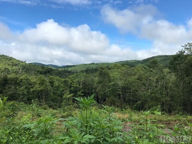Lot 25 Sherwood Forest, Highlands, NC 28741 (MLS #89090) :: Berkshire Hathaway HomeServices Meadows Mountain Realty