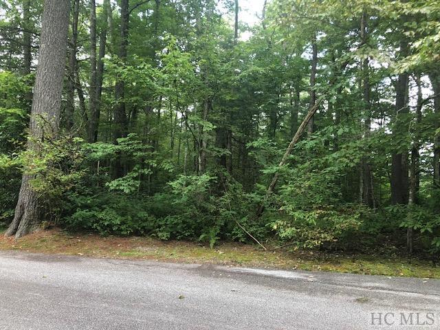 Lot 18 Divide Drive, Cashiers, NC 28717 (MLS #89254) :: Berkshire Hathaway HomeServices Meadows Mountain Realty
