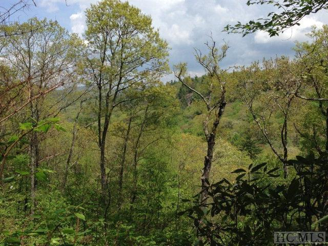 45 & 48 Satulah Ridge Road, Highlands, NC 28741 (MLS #89268) :: Lake Toxaway Realty Co