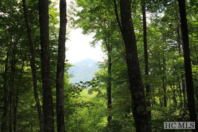 Lot 178 Blue Sky Drive, Cashiers, NC 28717 (MLS #89362) :: Berkshire Hathaway HomeServices Meadows Mountain Realty