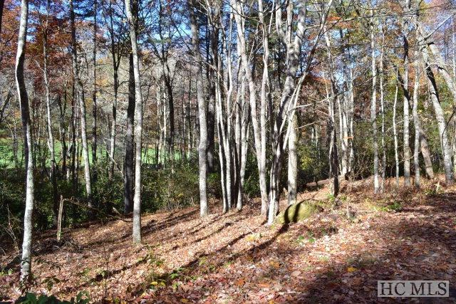 Lot 9 Blackberry Trail, Sapphire, NC 28774 (MLS #89513) :: Berkshire Hathaway HomeServices Meadows Mountain Realty