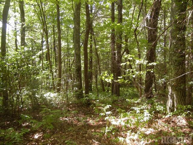 Lot R-43 Ox Lock Road, Cashiers, NC 28717 (MLS #89551) :: Berkshire Hathaway HomeServices Meadows Mountain Realty