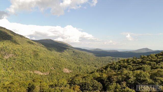 2 Frond Court, Sapphire, NC 28774 (MLS #89559) :: Lake Toxaway Realty Co