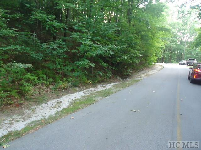 Lot 122 Black Oak Drive, Sapphire, NC 28774 (MLS #89668) :: Berkshire Hathaway HomeServices Meadows Mountain Realty