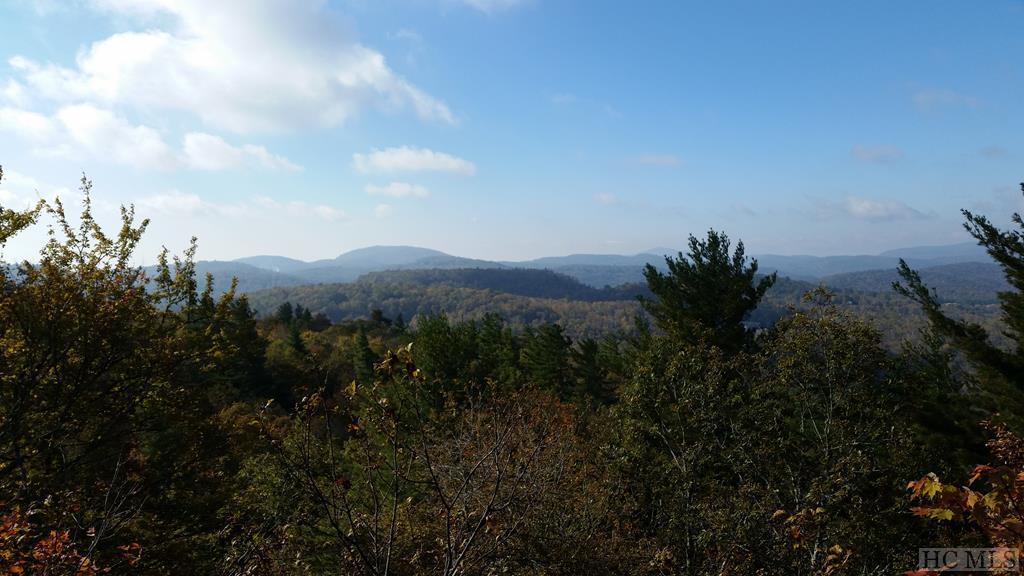 00 Cowee Ridge Road - Photo 1