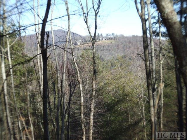2 Center Ridge Road, Cullowhee, NC 28723 (MLS #89739) :: Berkshire Hathaway HomeServices Meadows Mountain Realty