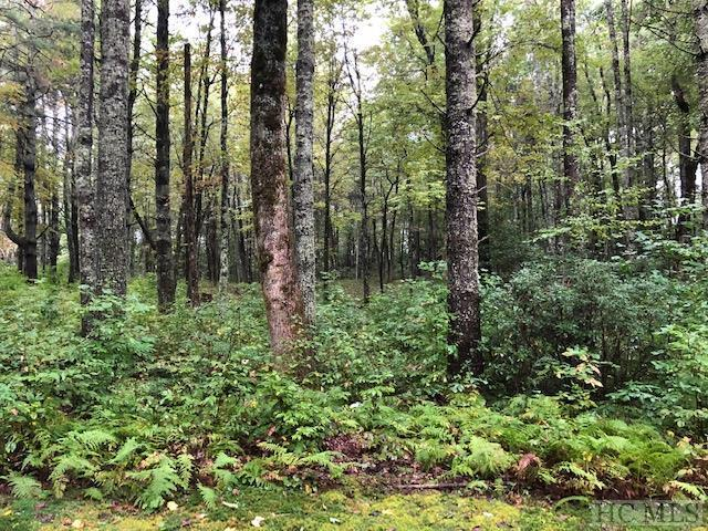 32B Lone Chimney Drive, Cashiers, NC 28717 (MLS #89745) :: Berkshire Hathaway HomeServices Meadows Mountain Realty