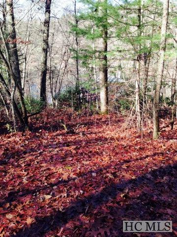 26 Woods Mountain Trail, Glenville, NC 28736 (MLS #89774) :: Berkshire Hathaway HomeServices Meadows Mountain Realty