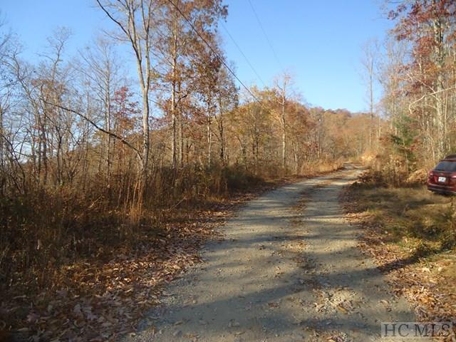 100 Hunter Jim Creek Road, Cullowhee, NC 28723 (MLS #89820) :: Landmark Realty Group