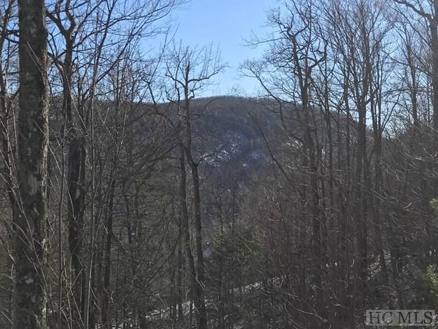 Lot 5 Equine Drive, Sapphire, NC 28774 (MLS #89966) :: Lake Toxaway Realty Co
