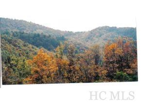 na Falls Road, Scaly Mountain, NC 28775 (MLS #90063) :: Berkshire Hathaway HomeServices Meadows Mountain Realty