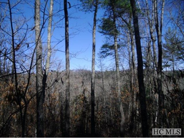 Lot 103 Tanawha Drive, Cashiers, NC 28717 (MLS #90106) :: Berkshire Hathaway HomeServices Meadows Mountain Realty