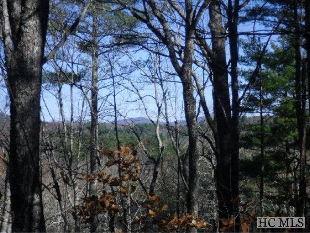 Lot 104 Tanawha Drive, Cashiers, NC 28717 (MLS #90107) :: Berkshire Hathaway HomeServices Meadows Mountain Realty