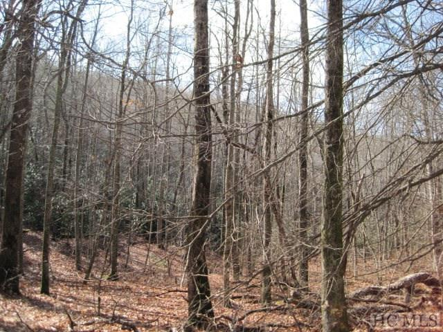 0 Owl Gap Road, Highlands, NC 28741 (MLS #90171) :: Berkshire Hathaway HomeServices Meadows Mountain Realty
