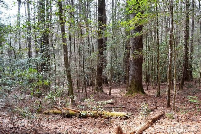 Lot 162 Sunrise Court, Sapphire, NC 28774 (MLS #90186) :: Lake Toxaway Realty Co