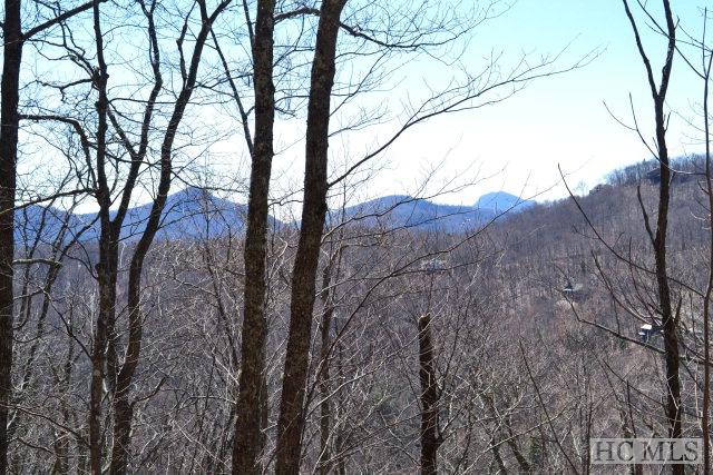 Lot 37 Hidden Grouse Lane, Sapphire, NC 28774 (MLS #90216) :: Berkshire Hathaway HomeServices Meadows Mountain Realty
