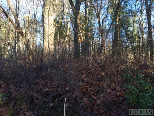 Lot 79 Pasture Road, Glenville, NC 28736 (MLS #90257) :: Berkshire Hathaway HomeServices Meadows Mountain Realty