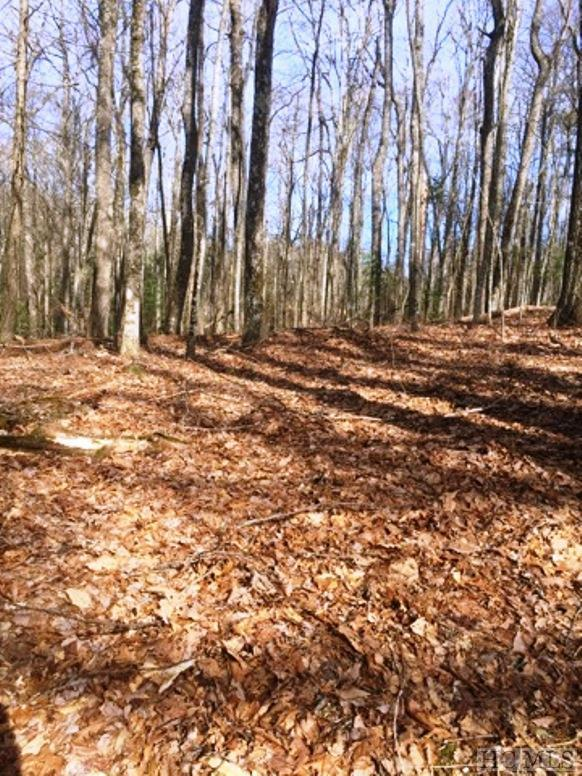 Lot 1 Watch Hill Lane, Cashiers, NC 28717 (MLS #90262) :: Berkshire Hathaway HomeServices Meadows Mountain Realty