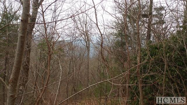 20 & 21 High Springs Lane, Cashiers, NC 28717 (MLS #90264) :: Berkshire Hathaway HomeServices Meadows Mountain Realty