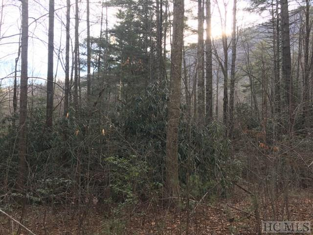 0 Whiteside Cove Road, Cashiers, NC 28717 (MLS #90340) :: Berkshire Hathaway HomeServices Meadows Mountain Realty