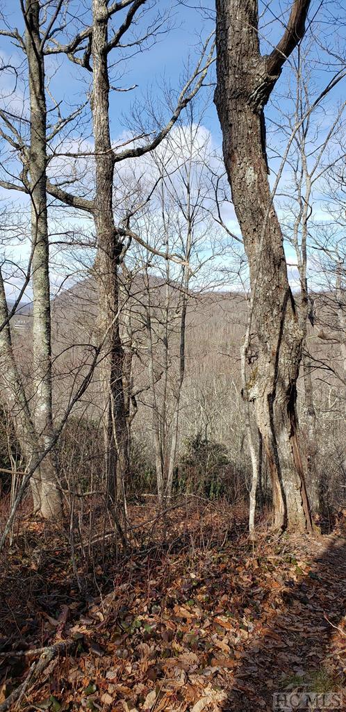 47 Falcon Ridge Road, Sapphire, NC 28774 (MLS #90348) :: Berkshire Hathaway HomeServices Meadows Mountain Realty