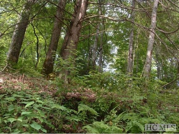 2A&3A Holt Circle, Highlands, NC 28741 (MLS #90442) :: Berkshire Hathaway HomeServices Meadows Mountain Realty