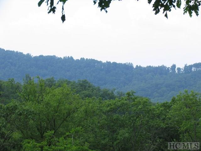 0 Chestnut Mountain Road, Scaly Mountain, NC 28775 (MLS #90488) :: Pat Allen Realty Group