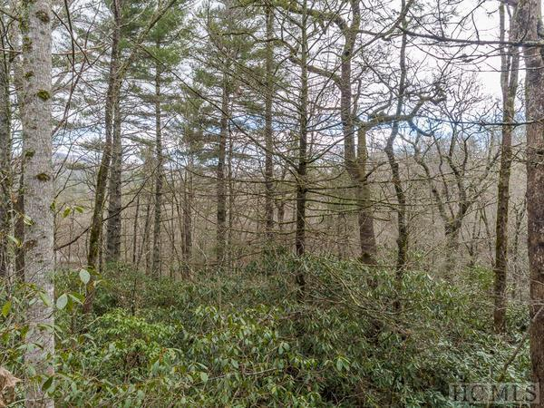 14 Mount Lori Drive, Highlands, NC 28741 (MLS #90547) :: Landmark Realty Group