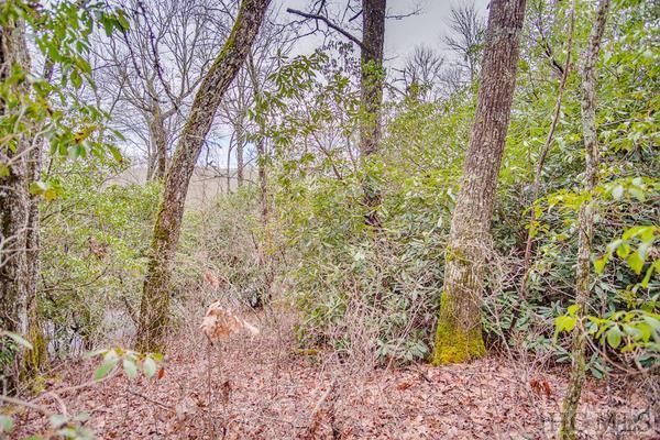 12 Mount Lori Drive, Highlands, NC 28741 (MLS #90548) :: Landmark Realty Group