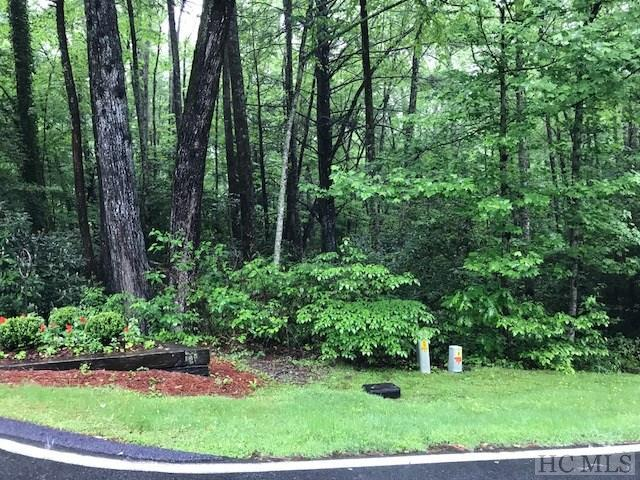 21 Boiling Springs Road, Sapphire, NC 28774 (MLS #90605) :: Berkshire Hathaway HomeServices Meadows Mountain Realty