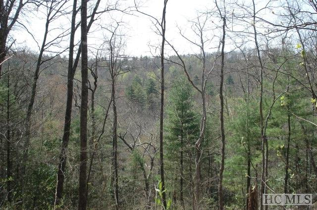 Lot 79 Parsons View, Cashiers, NC 28717 (MLS #90637) :: Landmark Realty Group