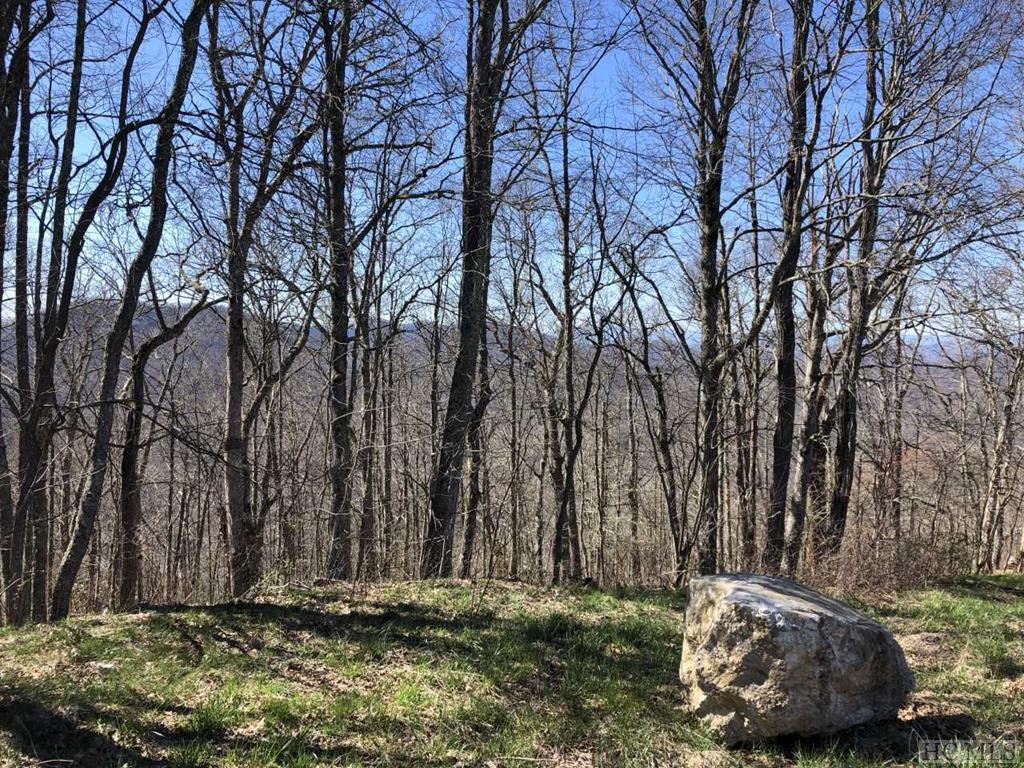 TBD Ridge View Road - Photo 1