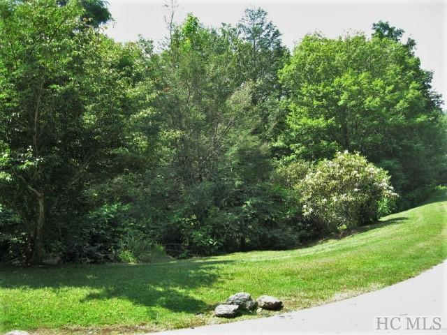 Lot 50 Big Sheepcliff Road, Cashiers, NC 28717 (MLS #90673) :: Berkshire Hathaway HomeServices Meadows Mountain Realty