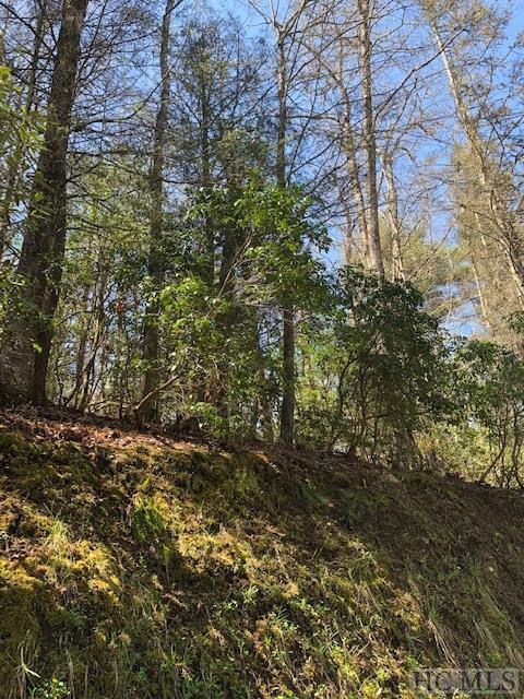 L C9-3 Indian Creek Drive, Lake Toxaway, NC 28747 (MLS #90962) :: Berkshire Hathaway HomeServices Meadows Mountain Realty