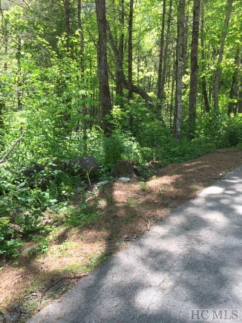 Lot 21 Bunker Hill Lane, Cullowhee, NC 28723 (MLS #90965) :: Pat Allen Realty Group