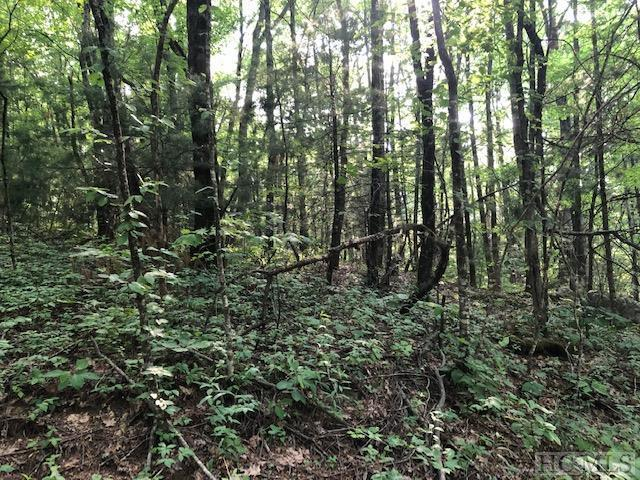 tbd High Point Drive, Scaly Mountain, NC 28775 (MLS #91143) :: Pat Allen Realty Group