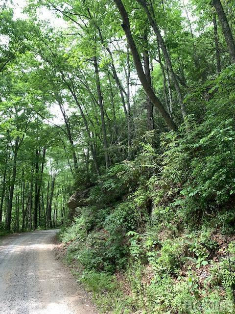 TBD Ellijay Road, Franklin, NC 28734 (MLS #91161) :: Berkshire Hathaway HomeServices Meadows Mountain Realty